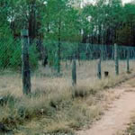 Wild Dog Barrier Fence